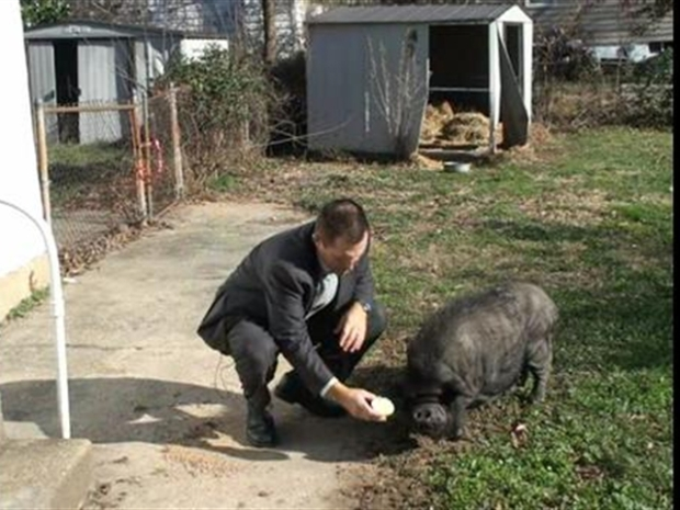 [DC] Gordon and the Pig, News4 Outtakes