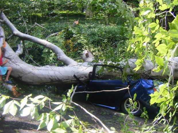 [DC] Hurricane Irene Viewer Pictures
