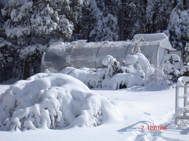 iSee: We Got Snow Pix, Part 4