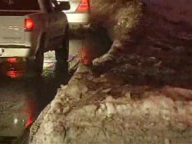 [DC] Drivers Return to Work -- Under Caution Flag