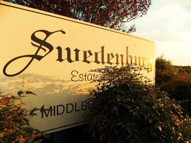 Wine Wednesday: Swedenburg Estate Vineyard