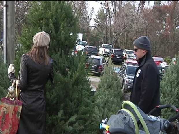 [DC] Christmas Trees for Military Families