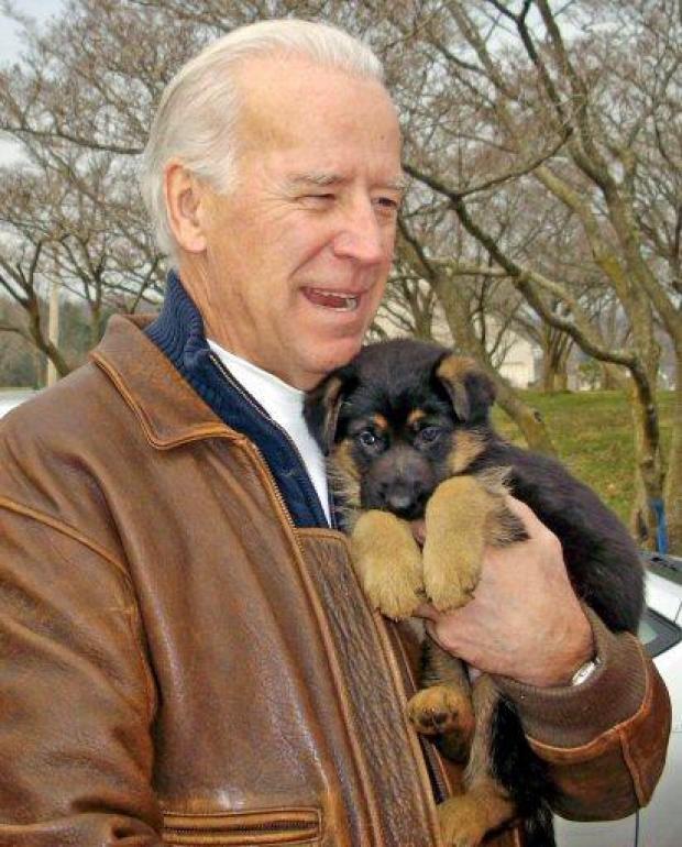 Biden Buys Puppy From Local Breeder