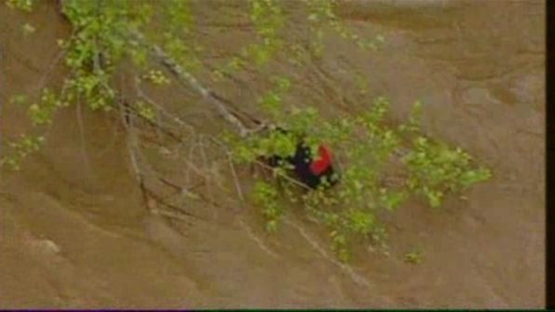 [DC] Raw Video: Kayaker Hangs Onto Tree in Potomac