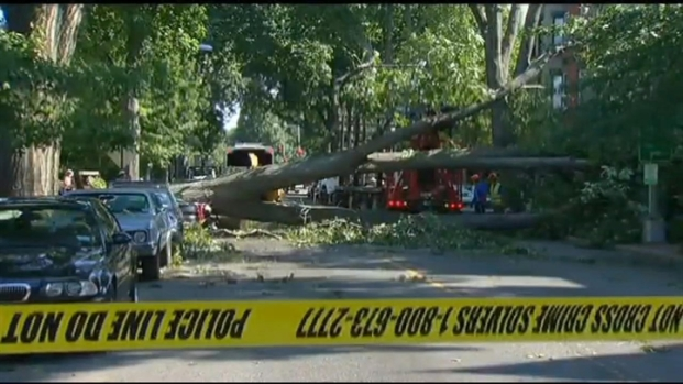 [DC] Storm Impact Hits Home in D.C.