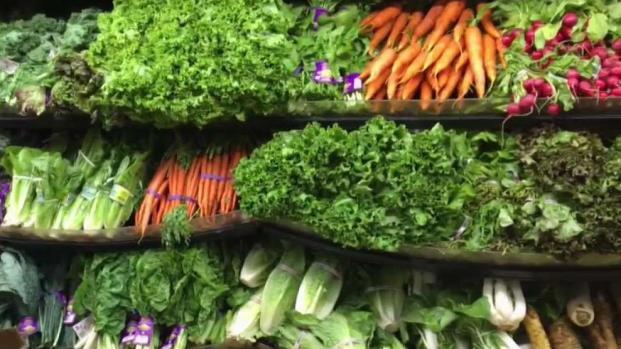 [DC] How to Get Enough Nutrients on Vegetarian or Vegan Diet