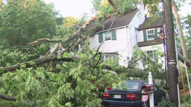 [DC] Trees and Wires Down After Storms in Bethesda