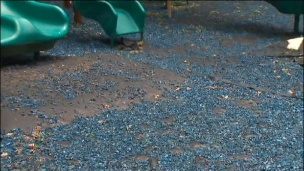 [DC] Playground Closed Over Toxic Concerns
