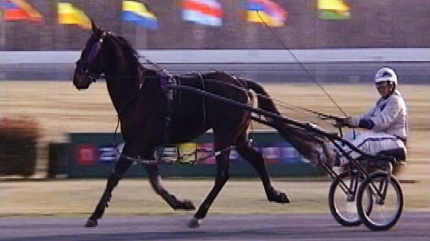 [DC] Live Racing Returning to Rosecroft