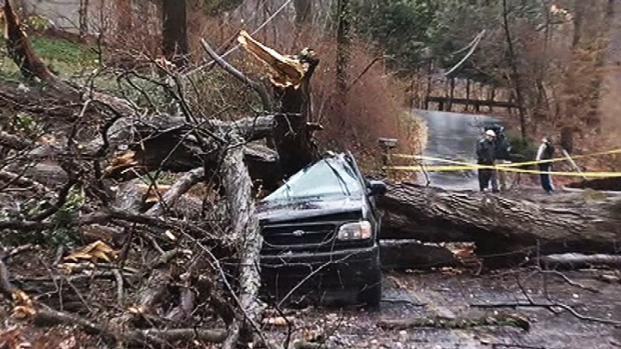 [DC] Trees Rip Through Home, SUV