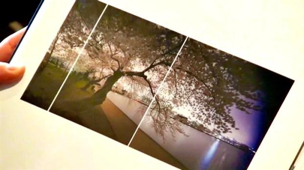 """[DC] """"City of Trees"""" Exhibit at Vastu"""