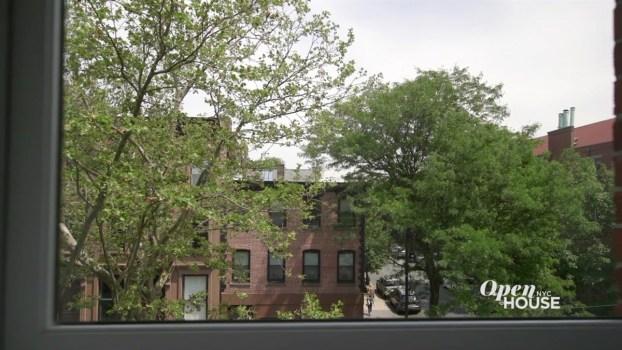 A Landscape Designer's Brooklyn Residence