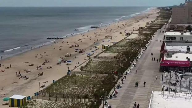 Best Beach Options for the Area