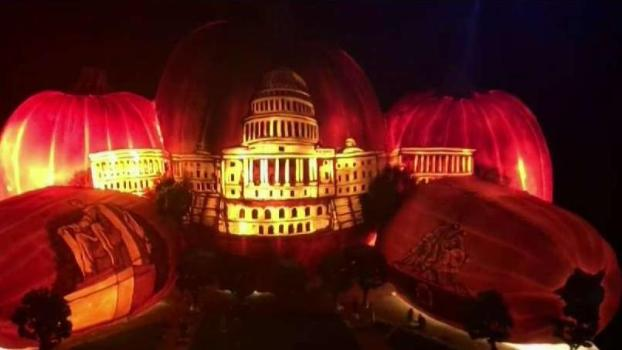 Glowing Pumpkin Patch on Display in Reston