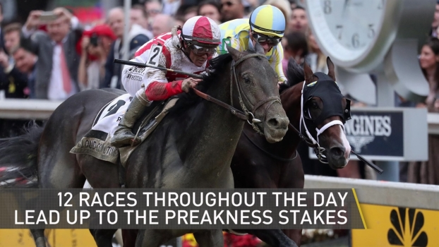 What to Know if You Go to Preakness