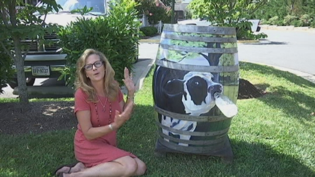 Art Lovers Have Virginia Town Over a Barrel
