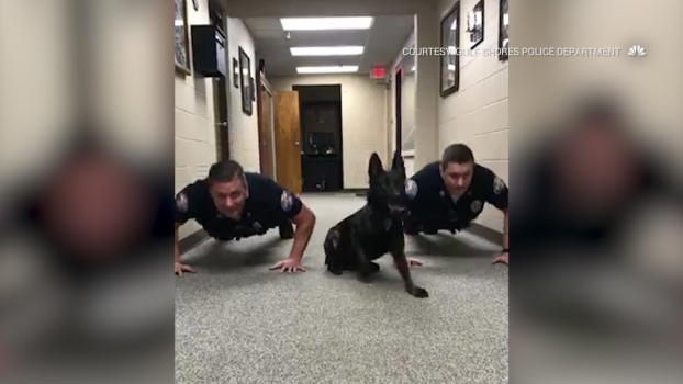 K-9 Joins Fellow Officers in Push-Up Routine