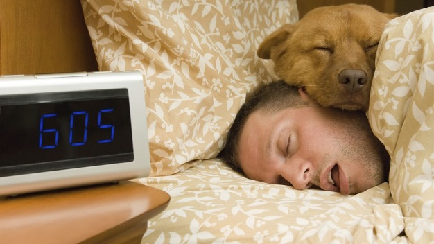 7 Hours May Be the Optimal Amount of Sleep