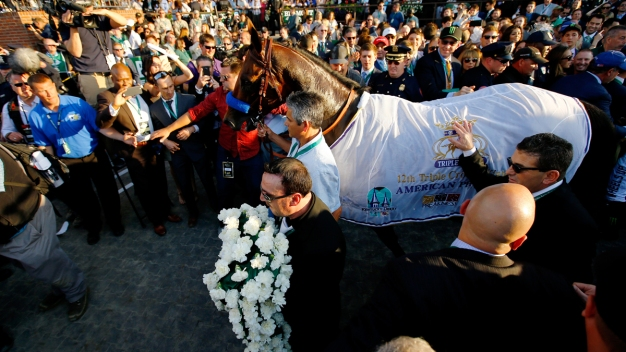 "American Pharoah's Owner: ""He Belongs to All of Us"""