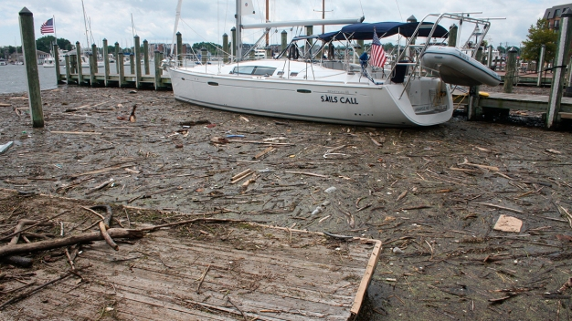 Report: Chesapeake Hit Hard by Pollution After Heavy Rains