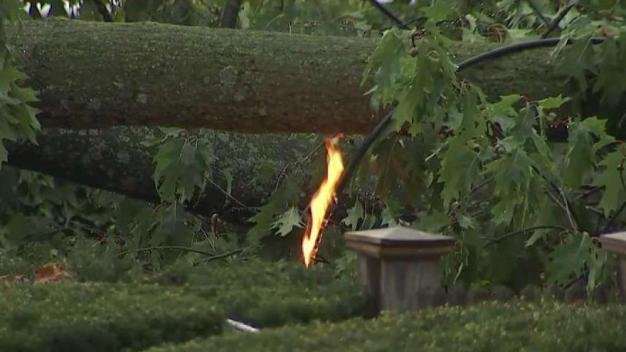 Trees Fall, Power Lines Catch Fire During Storms