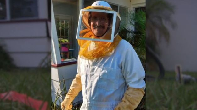 Grandfather Stung 150 Times While Trying to Remove Bee Hive