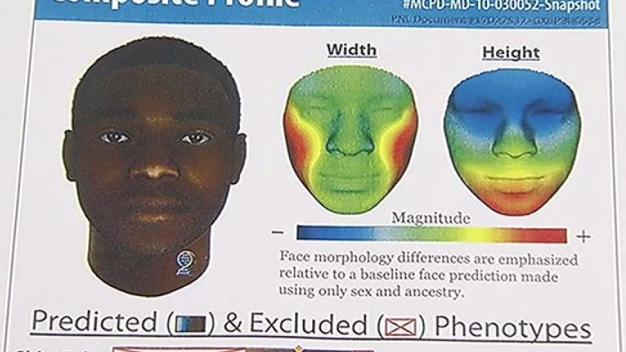 Police Use DNA to Create Image of Serial Rapist