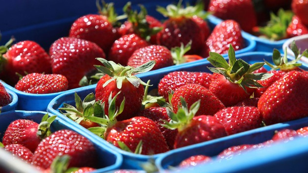Hepatitis A Cases Linked to Strawberries at Smoothie Chain