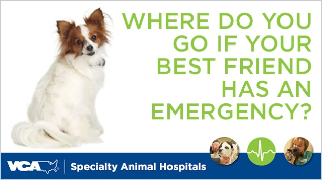VCA Specialty Animal Hospitals
