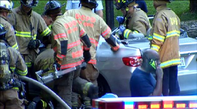 Police, Good Samaritans Lift Tree Off Car, Freeing Driver