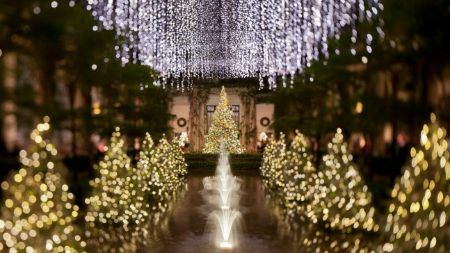 Top 12 Holiday Lighting Displays in the DC Area