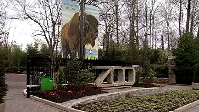 National Zoo Closes Attraction After E. Coli Discovered