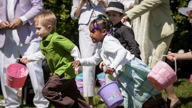 Easter Egg Hunts: Easy to Find in D.C., Maryland and Virginia