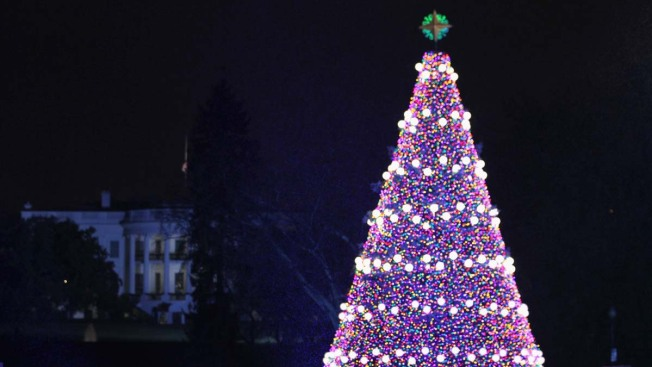 National Christmas Tree Lighting Set for Dec. 4; Lottery Dates Announced