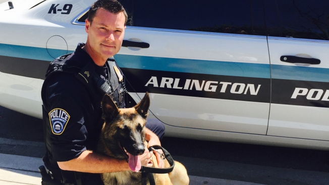 Arlington Officers Will Be Able to Officially Adopt Retiring Police Dogs