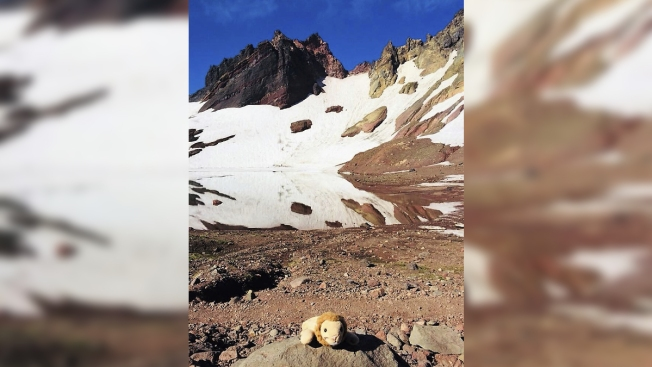 Stranger Reunites Girl With Toy Lion Lost on Remote Oregon Hike