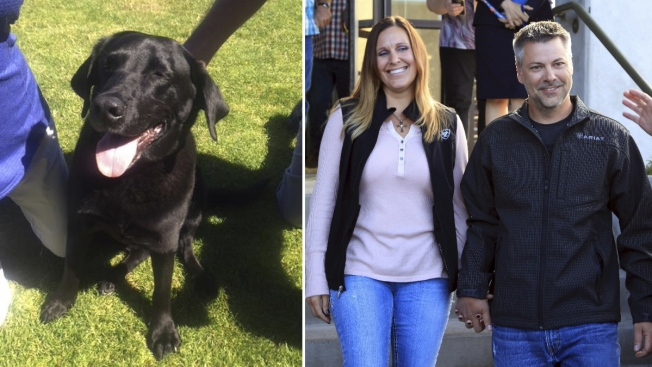 He Was Convicted of a Sex Crime — Until Investigators Found a Dog His Accuser Said He'd Killed
