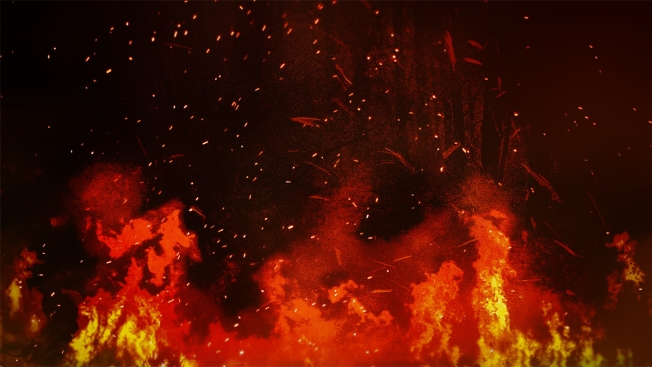Man Blew Up House on Daughter's Wedding Day: Police