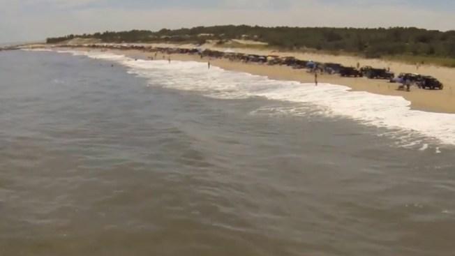 Boy, 16, Reports Being Bitten by Shark in Delaware