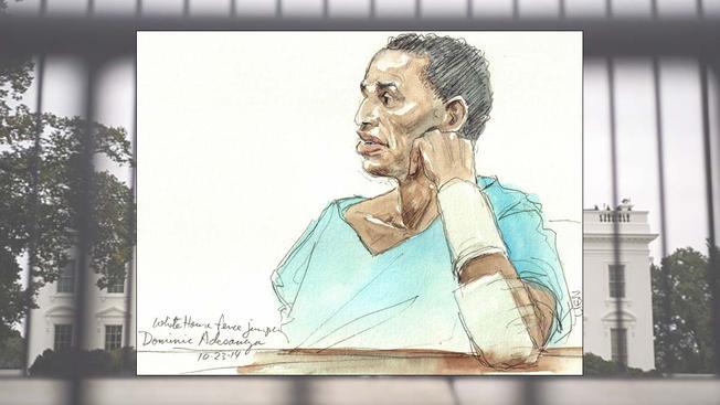 Dominic Adesanya, White House Fence Jumper, Sentenced