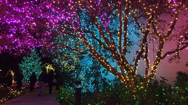 Visit D.C.-Area Holiday Lighting Spectaculars
