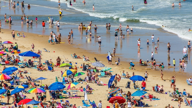 recent uptick in ocean city sea lice but don t panic beach patrol