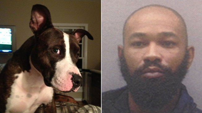 Charles Palmer Sentenced to 25 Months in Dog Abuse Case