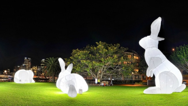 Giant Bunnies! Light Art Installation Opens at The Yards Park