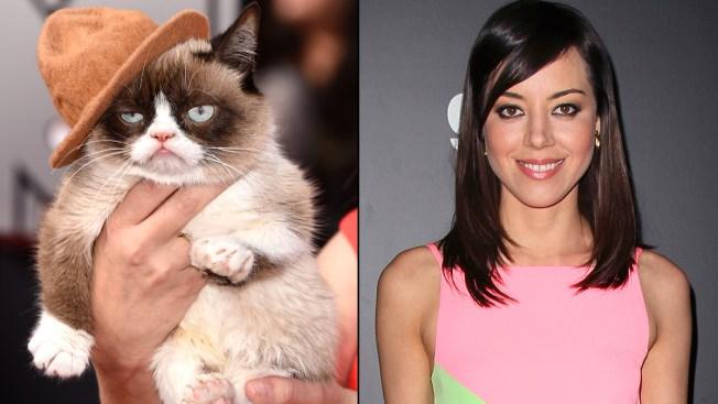Aubrey Plaza to Voice Grumpy Cat in Lifetime TV Movie
