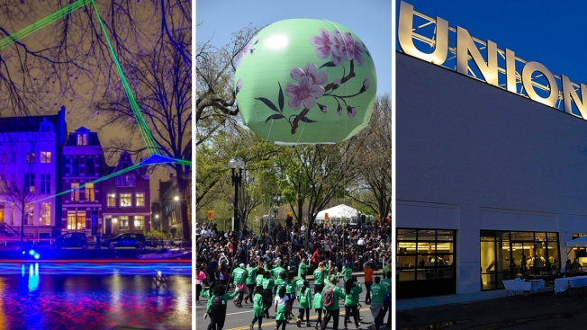 7 Fun Things to Do This Weekend in the DMV