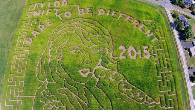 This Maryland Corn Maze Features Taylor Swift's Face