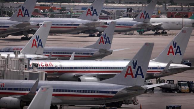 Flight to D.C. Returns to Dallas After Bird Strike