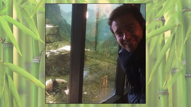 Hugh Jackman Visits Bao Bao at National Zoo