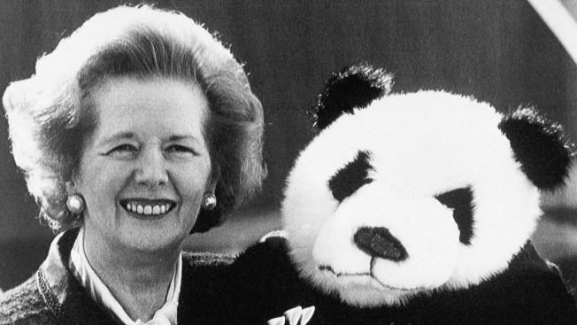 margaret teacher panda ile ilgili görsel sonucu